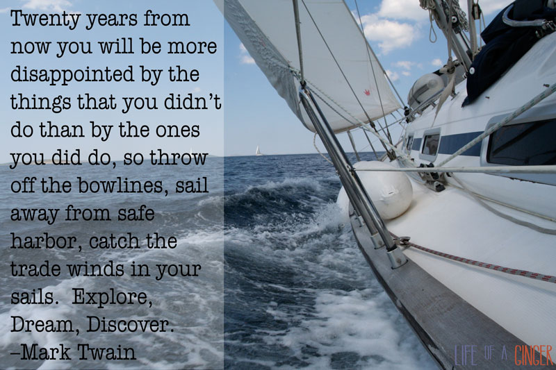 Twenty years from now you will be more disappointed by the things that you didn't do than by the ones you did do, so throw off the bowlines, sail away from safe harbor, catch the trade winds in your sails. Explore, Dream, Discover. –Mark Twain