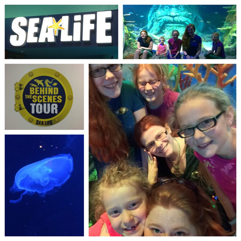 Mother's Day at the Aquarium