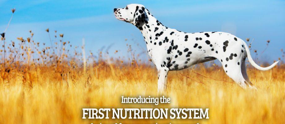 Petbrosia Pet Food [Review & Giveaway]