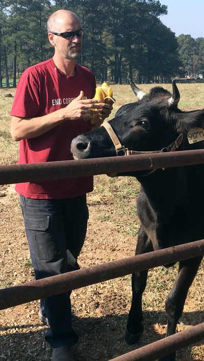 Dan Moore, Ninja Cow Farm
