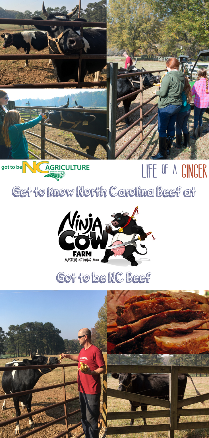 Read all about my Got To Be NC Beef tour of Ninja Cow Farm sponsored by the NCDA and check out my recipe for Simply Perfect Prime Rib Roast.
