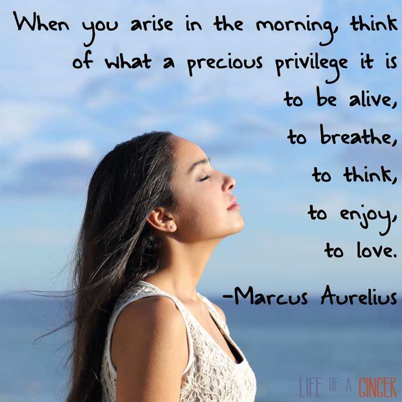 When you arise in the morning, think of what a precious privilege it is to be alive, to breathe, to think, to enjoy, to love. -Marcus Aurelius