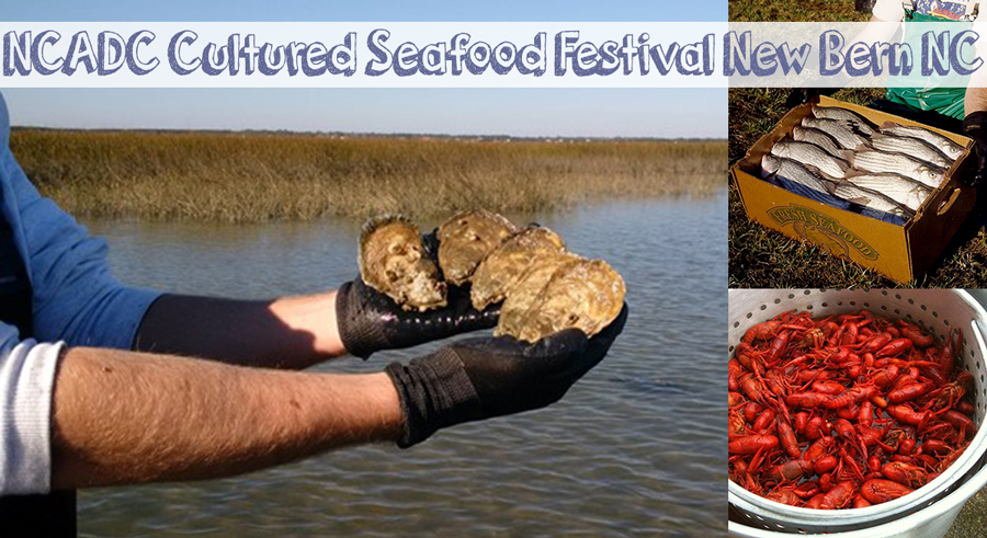 NCADC Cultured Seafood Festival: New Bern NC March 9, 2018