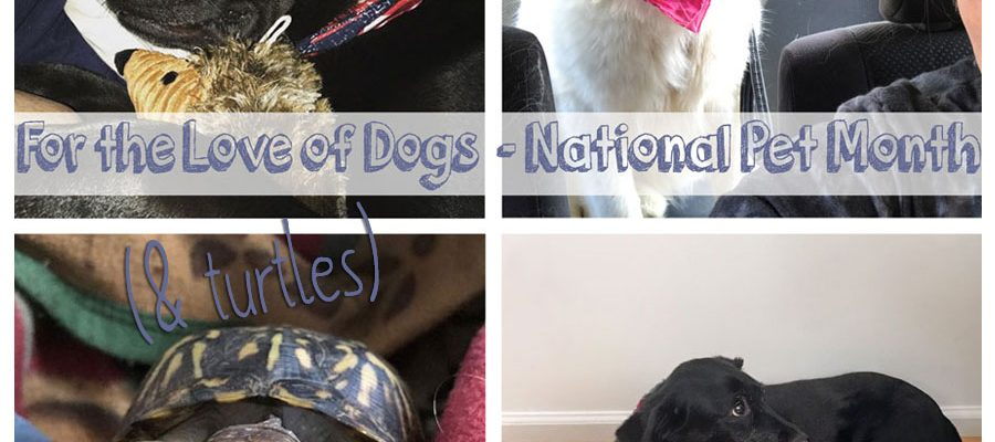 For the Love of Dogs-National Pet Month