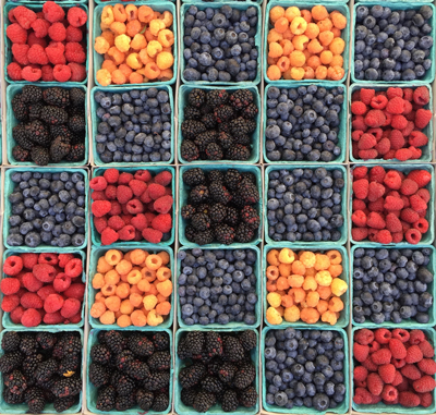 Tips to Keep Your Summer Fruit Fresh