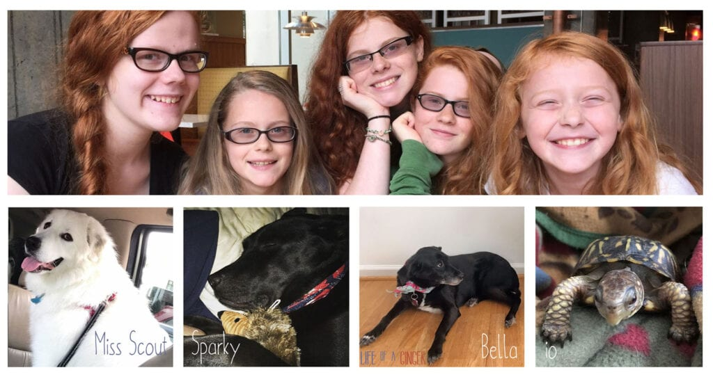 The Kelly Girls and Pets